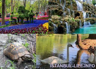 Парки в Стамбуле