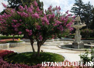 Стамбул в мае
