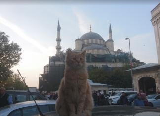 Новая мечеть в Стамбуле - мечеть валиде султан